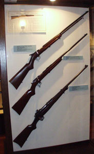 Remington bolt-action rifles.