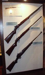 Remington bolt-action rifles.